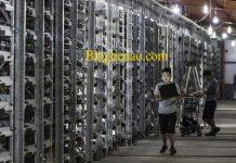 dao-coin-dao-bitcoin