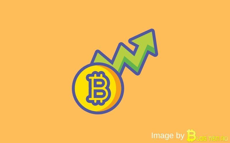 Đầu tư BTC