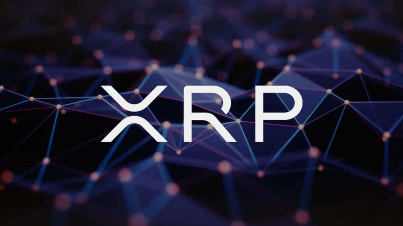 Ripple tiết lộ chi tiết mới về nền tảng giao dịch tiền điện tử bí ẩn