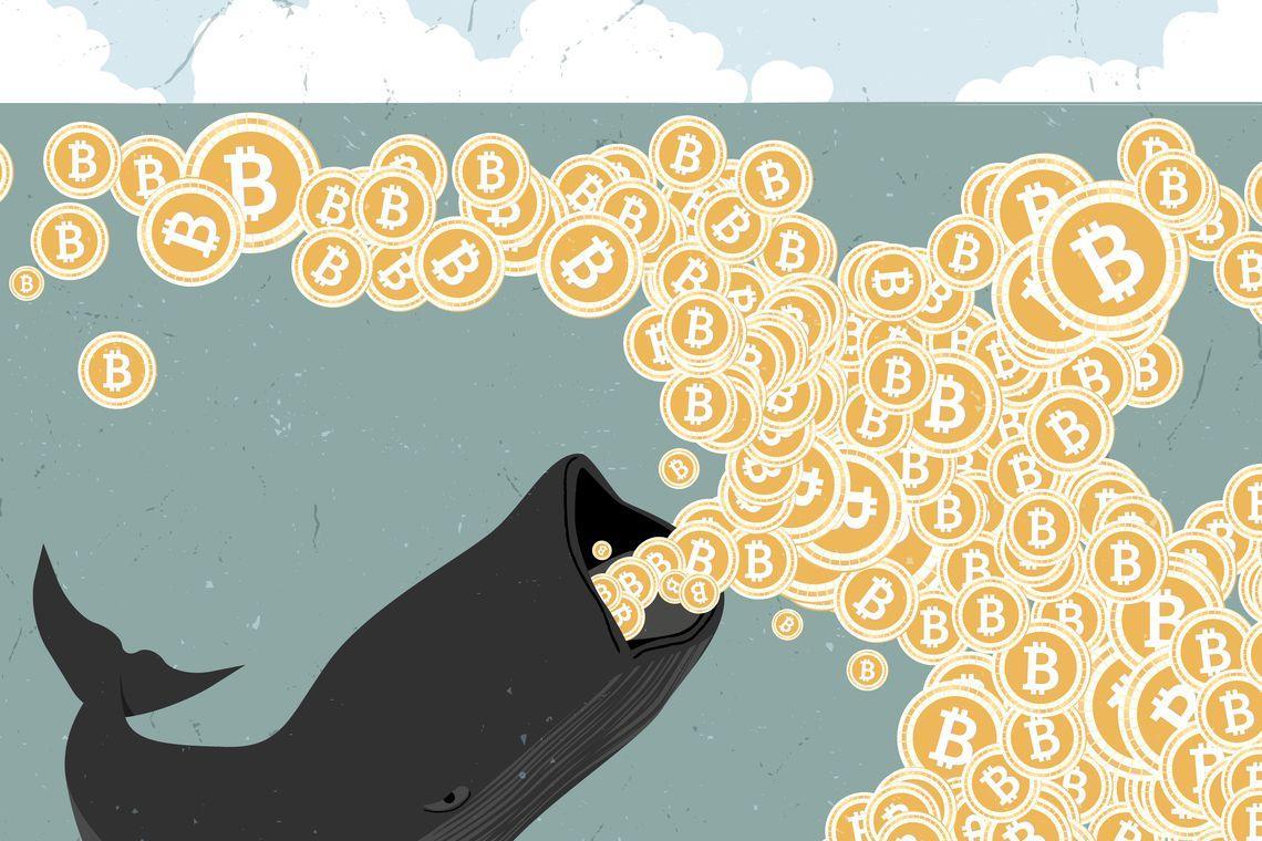 يمكن أن ينهار سوق البيتكوين إذا أرادت الشركات الكبيرة التحكم في BTC