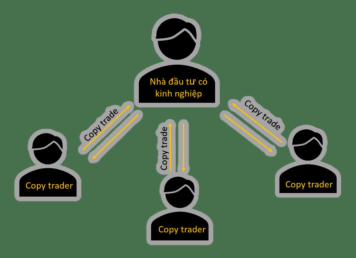 copy trade hoạt động như thế nào
