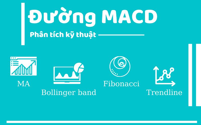 میکڈ شوگر کیا ہے؟