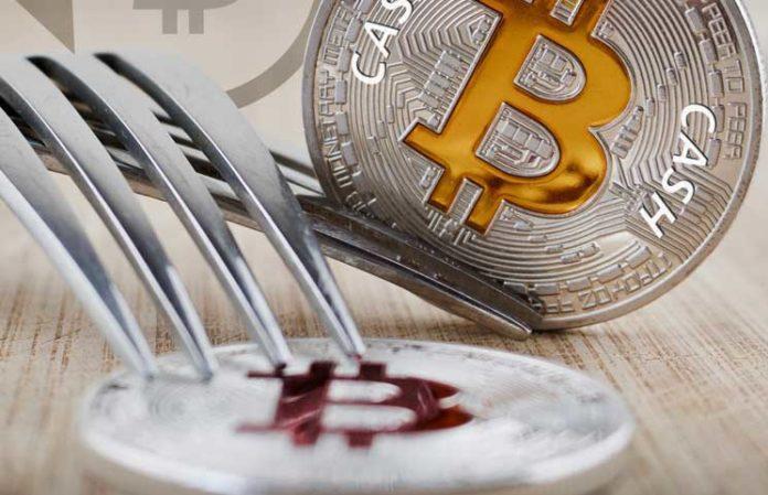 Một fork Bitcoin Cash mới đang được triển khai, giới đầu tư BTC có nên thấy lo lắng?