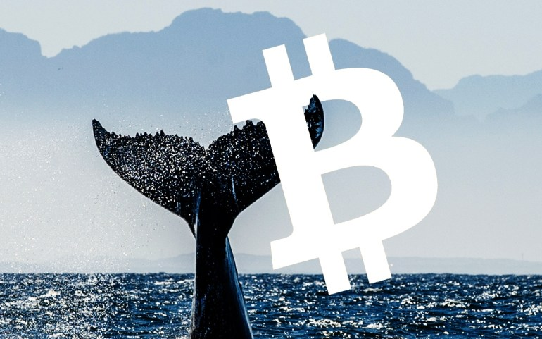 Cá voi di chuyển 641 triệu USD Bitcoin