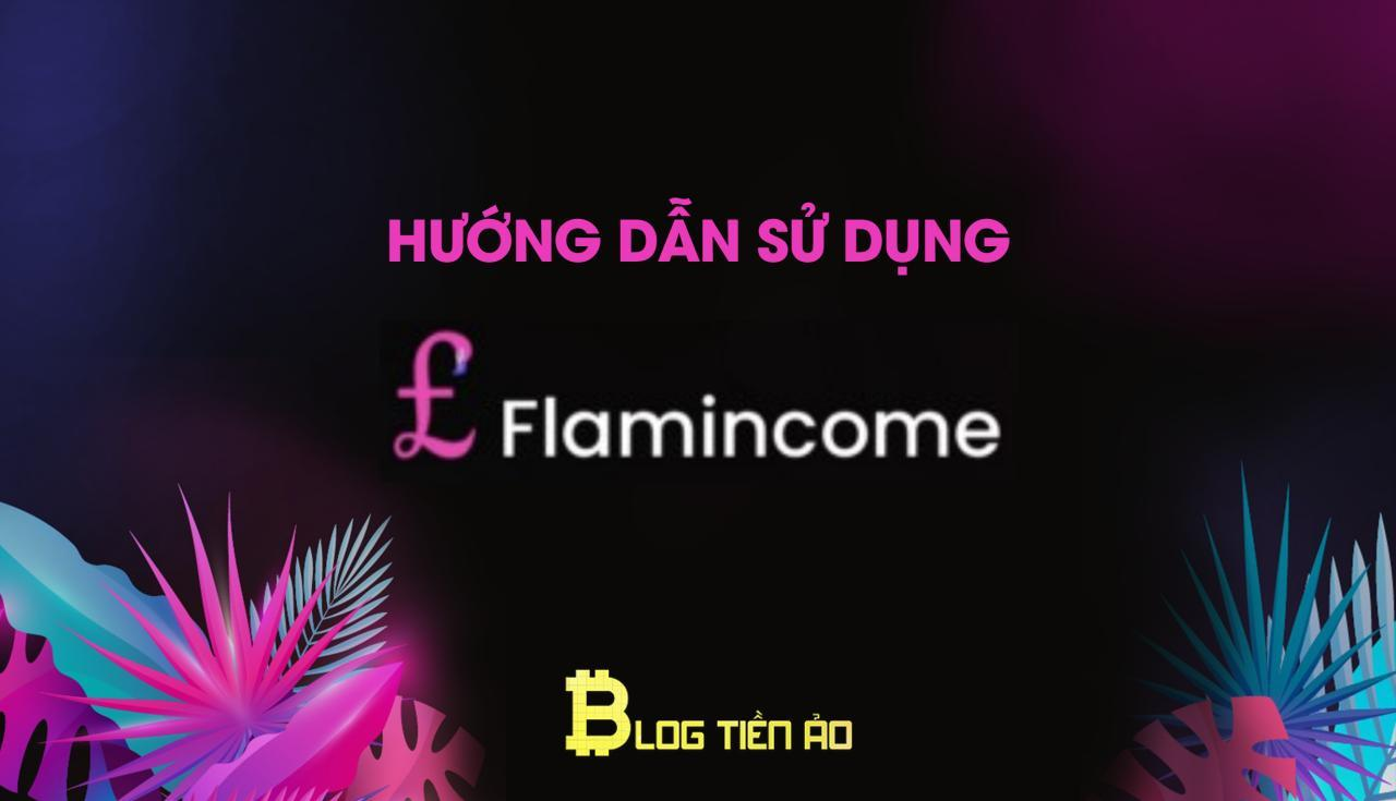 Instructions d'utilisation de flamincome