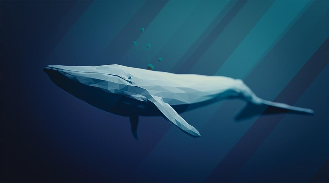 Een walvis veegde plotseling zijn portemonnee weg met meer dan 17,000 BTC