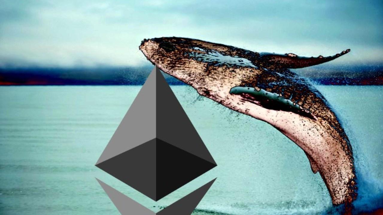 تكشف الشركة المحللة عن العدد المتزايد من الحيتان التي تراكم ETH