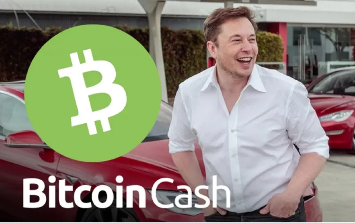 Elon Musk đồng ý việc Bitcoin Cash có một số lợi thế nhất định so với Bitcoin