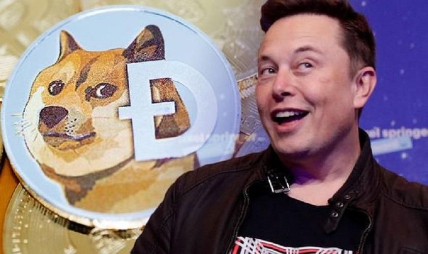 Shill inayoendelea na Elon Musk, bei ya Dogecoin ilirekodi mwiba