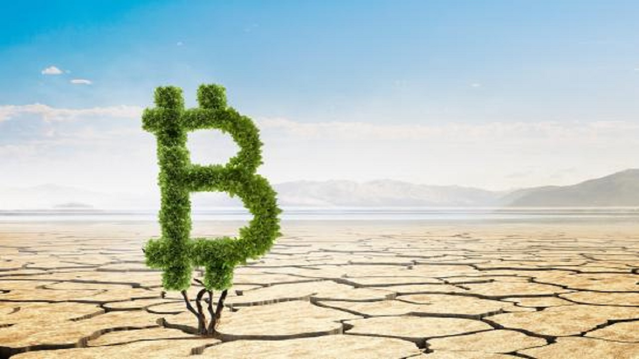 Bitcoin có thực sự gây hại cho môi trường không?
