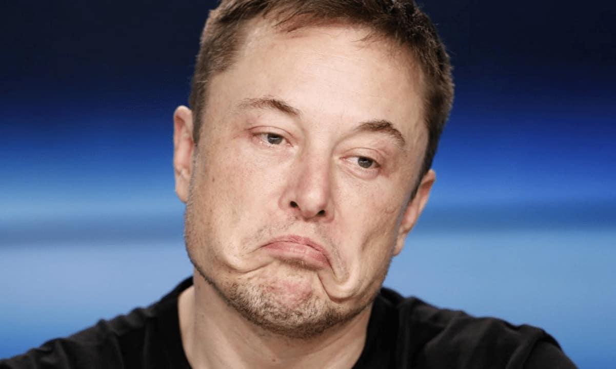 """Cá voi Bitcoin tiếp tục tích lũy trong """"cơn bão"""" do Elon Musk gây ra"""