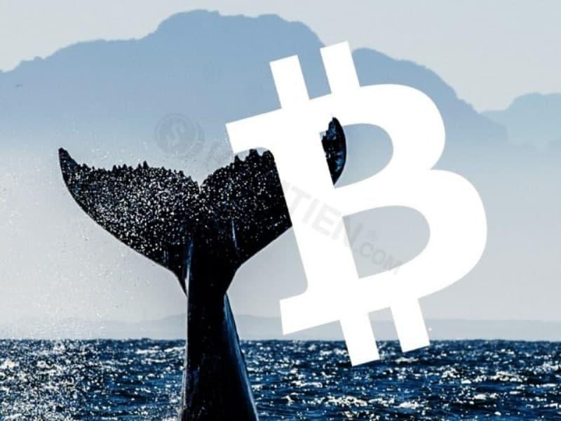 Hơn 47 triệu USD Bitcoin vừa được chuyển lên Binance