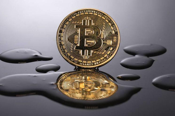 Holder liên tục tích lũy Bitcoin sau các đợt bán tháo